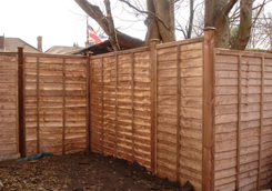 Larch Fencing Panels